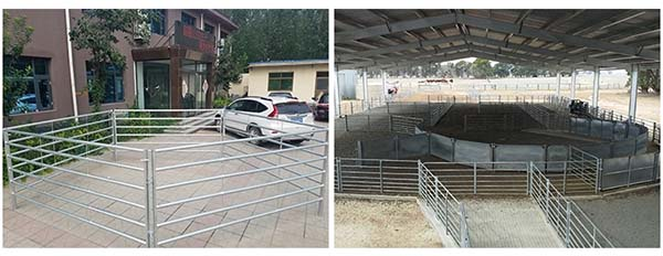 Heavy duty livestock Cattle Panel