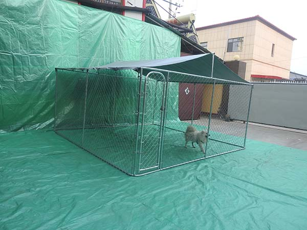 Factory galvanized outside Chain Link Dog Cage